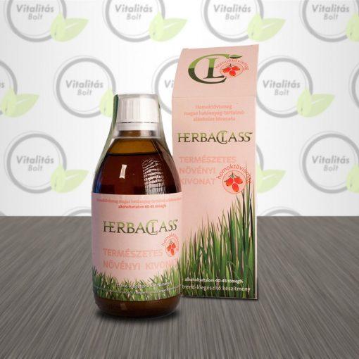 HerbaClass Természetes növényi kivonat Homoktövismag - 300 ml