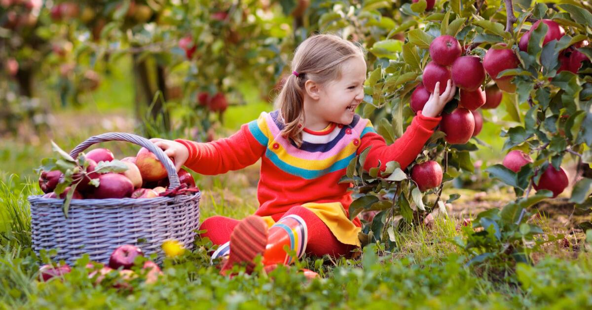 Az egészséges édesség, amit a legkisebbek és a legnagyobbak is imádni fognak
